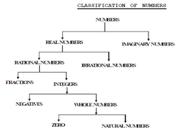 17 Perspicuous Number System Flowchart
