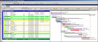 Primavera P6 Displaying Total Float Of Activities On The