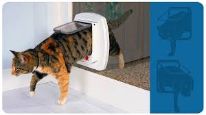 here at the glass uk we install micro chipped and 4 way locking cat flaps we are the number one choice for value sd competence and reliability