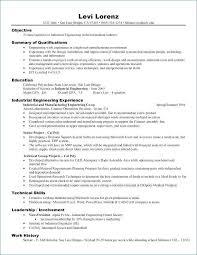 Skills Based Resume Fascinating Skills Based Resume Example Luxury Skills Based Resume Examples