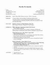 Free Professional Resume Template Download New Download Free