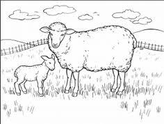 Small Picture sheep coloring pages for preschool free coloring pages for kids