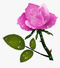 Clip Art Free Download - Rose Flower ...