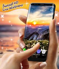 Hd Wallpaper For Vivo Y51l - Samsung ...