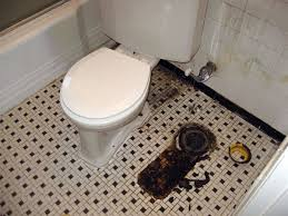 If Toilet Isn't Sitting Pretty Air Can Be Pretty Foul Faulty Seal Interesting Sour Smell In Bathroom