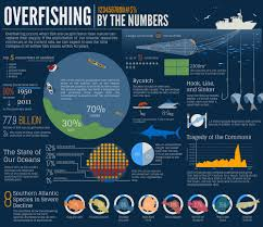 Image result for overfishing