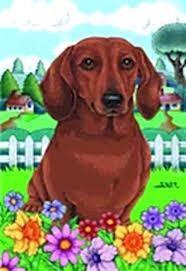 details about outdoor garden flag dachshund dog breed spring colors small made dapple dachshund garden flag