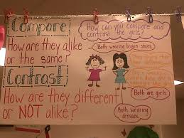 Anchor Charts Teaching In High Heels