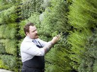 532 Best gardening images in 2019 | Gardens, Backyard designs ...
