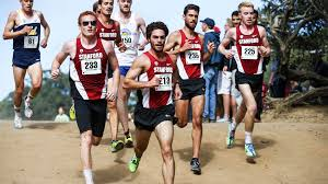 runners flock to stanford invite