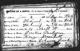 Page 1 in Cuyahoga County Birth Returns (OH) - Fold3