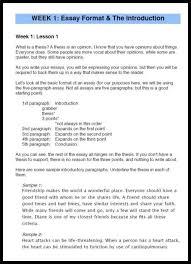 die besten school essay ideen auf aufsatz themen homeschool high school essay writing how to get started