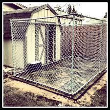 outdoor dog kennel flooring ideas image of with roof outdoor dog kennel flooring