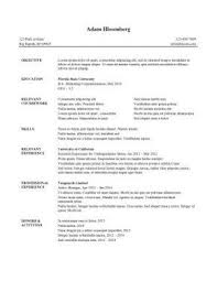 Internship Resume Sample 10