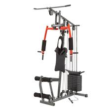 Torros G3 Home Gym Exercise Chart Pin On Fitness Ideas