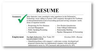 What Skills Should I Put On My Resume Interesting Summaries For Resumes Resume Badak