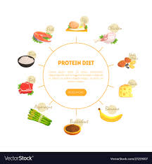 Protein Diet Chart Diagram Nutrition And