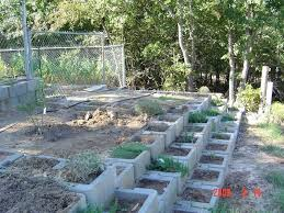 specialty gardening concrete block containers for raised beds 1 by garden bed is it safe to use blocks