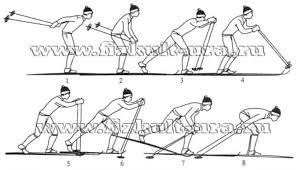 Лыжные шаги виды Техника классических лыжных ходов реферат После окончания одновременного толчка руками лыжник скользит на двух лыжах в согнутом положении и медленно выпрямляясь начинает выносить палки вперед