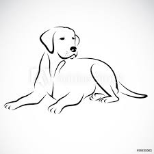 Fotografie Obraz Vector Image Of An Dog Labrador Posterscz