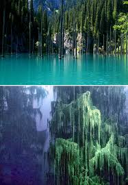 10 amazing nature pictures lake kaindy s underwater forest