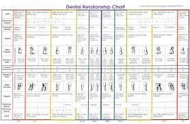 Tooth Organ Meridian Chart 50 Methodical Teeth Chart To Organs