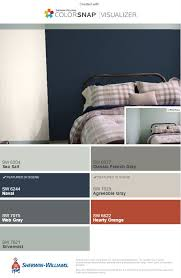 accent wall and sw agreeable gray