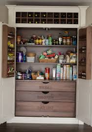 For Kitchen Pantry Storage Solutions For Kitchen Pantry Home Design Ideas