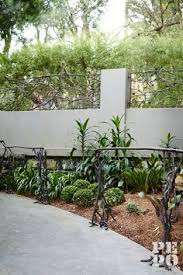 Small Picture Interior planting design Maroubra Eastern Suburbs Sydney By Pepo