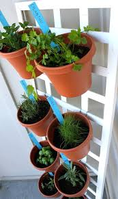 plant pots seattle home depot plant containers space saving herb garden recycling plastic plant pots seattle plant pots