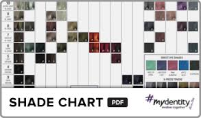 Guy Tang Color Chart Customized Colors We All Dream Of Mydentity Guy_tang