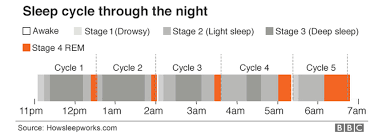 Ideal Sleep Cycle Chart 10 Things To Know About Sleep As The Clocks Change Bbc News