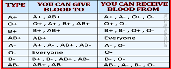 The Biology Of Blood Groups