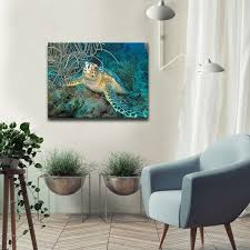 chris doherty x27 turtle x27 24x32 in canvas wall art on interior design canvas wall art with shop chris doherty turtle 24x32 in canvas wall art blue on