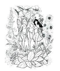 Printable Coloring Pictures Of Fairies Best Coloring Fairies Amp