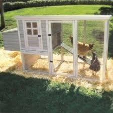 Farmstead Chicken Coop on sale for 293 down from 1452