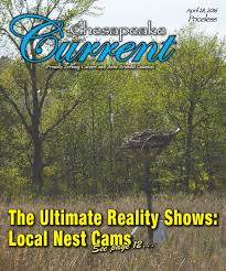 Chesapeake Current 042816 by Chesapeake Current issuu