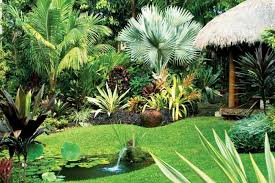 Small Picture Tropical garden Tropical garden Drought tolerant plants and