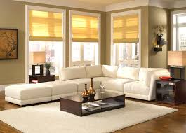Sectional Living Room White Sectional Living Room Elegant Sofa And Rug For Cozy