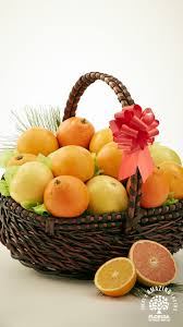 send a basket of sunshine straight from the florida citrus groves this holiday season sweet juicy and fragrant florida oranges gfruit and tangerines