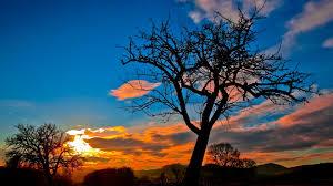 sunset 4k best hd wallpaper for pc free ...