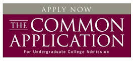 great common application essays common app apply now