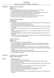 Visual Associate Resume Samples Velvet Jobs
