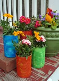 Recycled soup cans turned into flower pots.