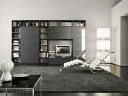 Modern Living Room Black And White Decoration Fashionable Black Rug On Modern Living Room With