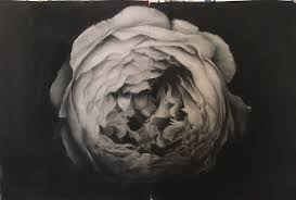 Jana Hunt - Art Gallery on DarlingArt Gallery on Darling