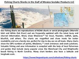 Fishing Charts Sharks In The Gulf Of Mexico Sealake Products Llc