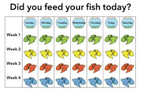 5 Reasons A Fish Is An Awesome First Pet For Your Child I