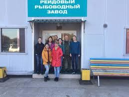 Отчет о практике Калининградский государственный технический  Отчет о практике