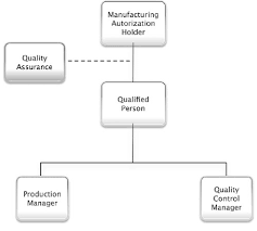 Standard Org Chart Standard Organizational Chart For A Gmp Production Site